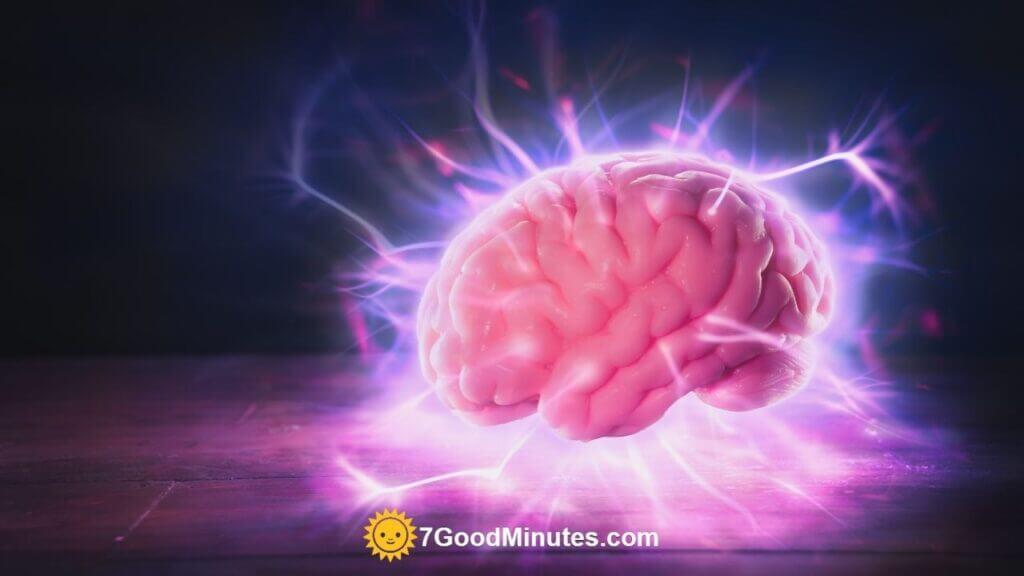 Best Foods For Brain